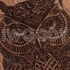 Owl | Makore