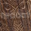 Owl | Nut