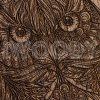Owl | Nut F